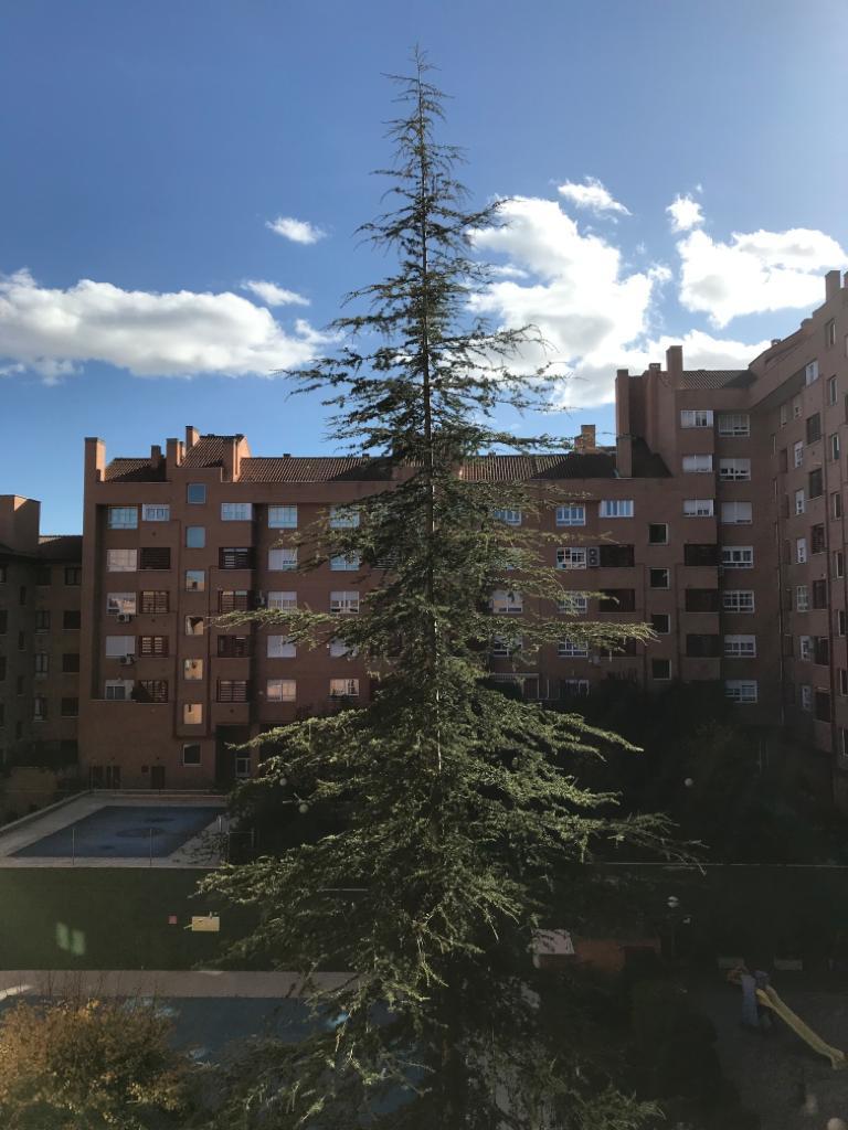 Imagen que contiene exterior, edificio, cielo, árbol  Descripción generada automáticamente